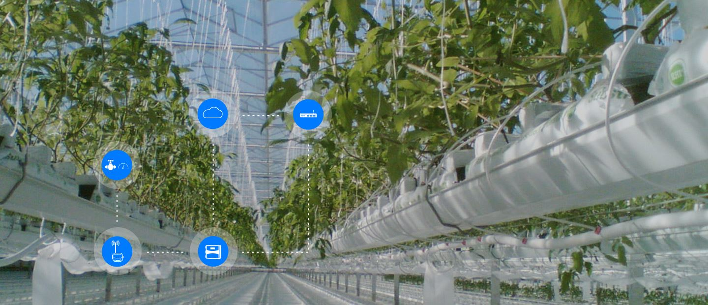 OPTIMIZING PROTECTED CROPS GROWTH WITH NETBEAT™