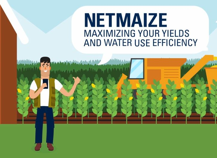 NetMaize – The maize irrigation app