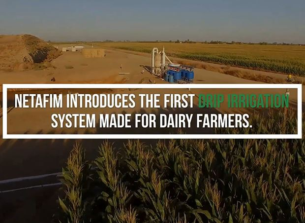 Netafim's Innovative Effluent Subsurface Drip Irrigation Solution for Dairy Forage Crops is Recognized as Official Conservation Practice by USDA
